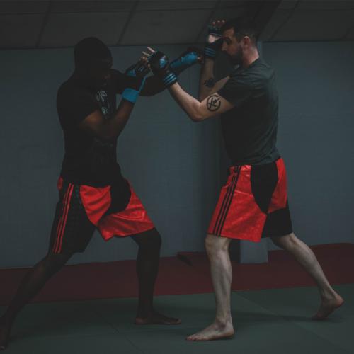 apprendre le MMA à Paris